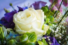 Bouquet with rose. Bouquet with yellow rose and hydrangea Stock Photos