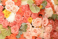 Bouquet with rose bush or background Stock Image