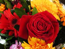 Bouquet with a rose closeup royalty free stock photography