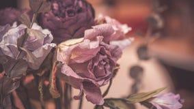 Bouquet rose coloré de fleur de fleurs images libres de droits