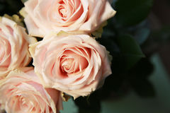 Bouquet rose de roses Image libre de droits