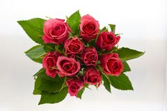 Bouquet rose de rouge Photographie stock libre de droits