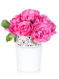 Bouquet of rose flowers Royalty Free Stock Images