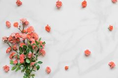 Bouquet of rose flowers in Living Coral color on white marble background. Pantone color of the year 2019