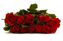 Bouquet of rose flowers on white background royalty free stock images