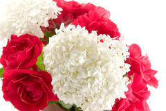 Bouquet with rose and  hydrangea. On a white background Royalty Free Stock Photo