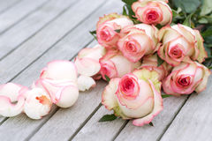 Bouquet with rose for Mothers Day stock photography