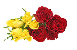 Bouquet of rose Royalty Free Stock Images