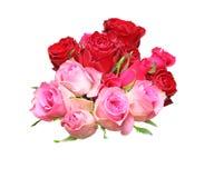 Bouquet of rose Stock Photos