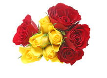 Bouquet of rose Stock Photo