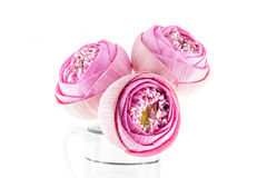 Bouquet rose plié de fleurs de lotus dans le vase Photo libre de droits