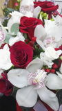 Bouquet. Rose red flower white Stock Photos