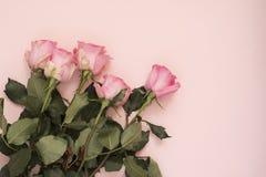 Bouquet rose renversant des roses sur le fond rose ivre Copiez l'espace, cadre floral Mariage, carte cadeaux, jour du ` s de vale Image stock