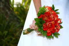 Bouquet Roses Stock Photography