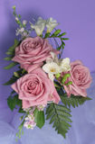 Bouquet of roses. On blue background Stock Photography