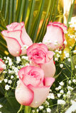 Bouquet of roses. Holiday background Stock Photography