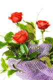 A bouquet of roses Royalty Free Stock Photos