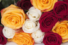 Bouquet Roses Royalty Free Stock Photo