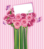 Bouquet of roses. With a letter of congratulations Stock Image