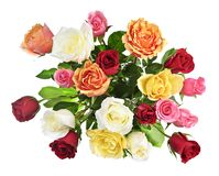 Bouquet of roses from above. Bouquet of assorted multicolored roses from above isolated on white background Stock Photo
