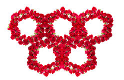 Bouquet of roses arranged to form a olimpic rings or design element for floral themes.  Stock Photo