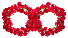 Bouquet of roses arranged to form a rings or design element for floral themes.  Stock Photo