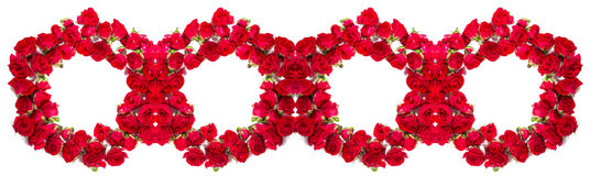 Bouquet of roses arranged to form a rings or design element for floral themes.  Royalty Free Stock Images