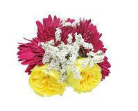 Bouquet of roses,babys breath and gerbera Stock Photography