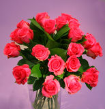 A bouquet of roses Stock Image