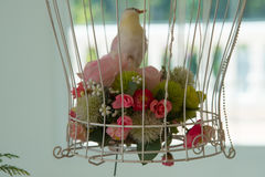 Bouquet of roses and bird in cage. Bouquet of roses and bird in cage for decoration Royalty Free Stock Photo