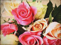 Bouquet of roses. Bunch of pink roses Stock Photo
