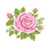 Bouquet of the roses, Royalty Free Stock Image