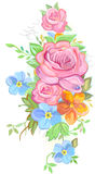 Bouquet of roses and forget-me-nots Stock Photos