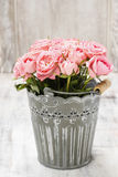 Bouquet of roses in grey decorative bucket Royalty Free Stock Photography