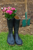 Bouquet of roses in gumboots Royalty Free Stock Photos