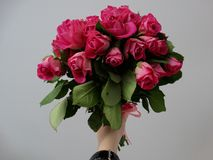 Bouquet of roses. Hand holding a bouquet of roses Stock Photography