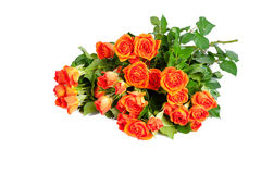 Bouquet of roses isolated on white background. Stock Photos