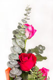 Bouquet of roses isolated Stock Photo