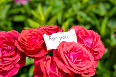 Bouquet of Roses and Love Letter Royalty Free Stock Image