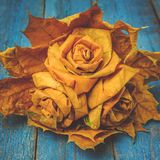bouquet of roses made from fallen maple leaves stock image