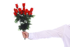 A bouquet of roses in a male hand on white. A bouquet of roses in a male hand in white shirt on white background stock photography