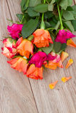 Bouquet of roses with petals Royalty Free Stock Image