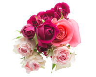 The bouquet of roses Stock Image