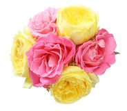 Bouquet of roses Royalty Free Stock Images