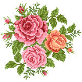 Bouquet of the roses stock illustration