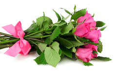 Bouquet of roses with pink ribbon Stock Images