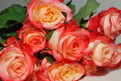 Bouquet of roses. Bouquet of red roses sprinkled with dew royalty free stock images