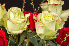 A bouquet of roses. A bouquet of red and yellow roses with red tip Stock Image