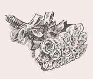 Bouquet of roses with ribbon hand drawn sketch Royalty Free Stock Image