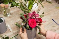 Female hands make bouquet royalty free stock photography